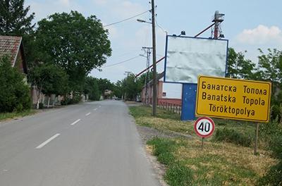 banatska_topola