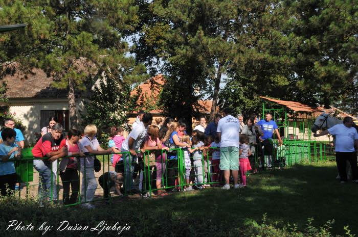 radionica za decu skk-topot-radionica-30-avgust